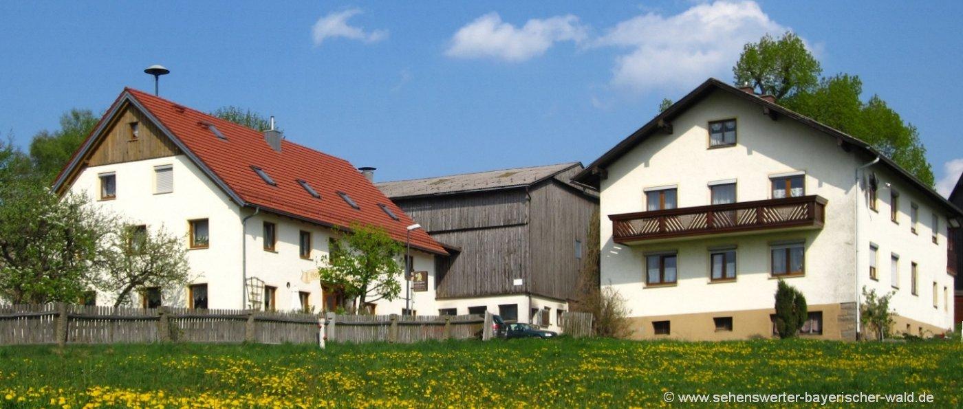 schneider-tiefenbach-bauernhof-oberpfalz-ferienhof-ansicht
