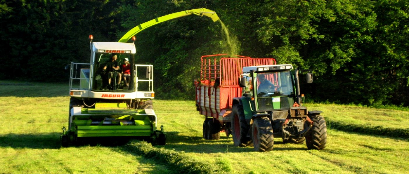 Oberpfälzer Wald Ferienhof in der Oberpfalz Bauernhof Traktor fahren