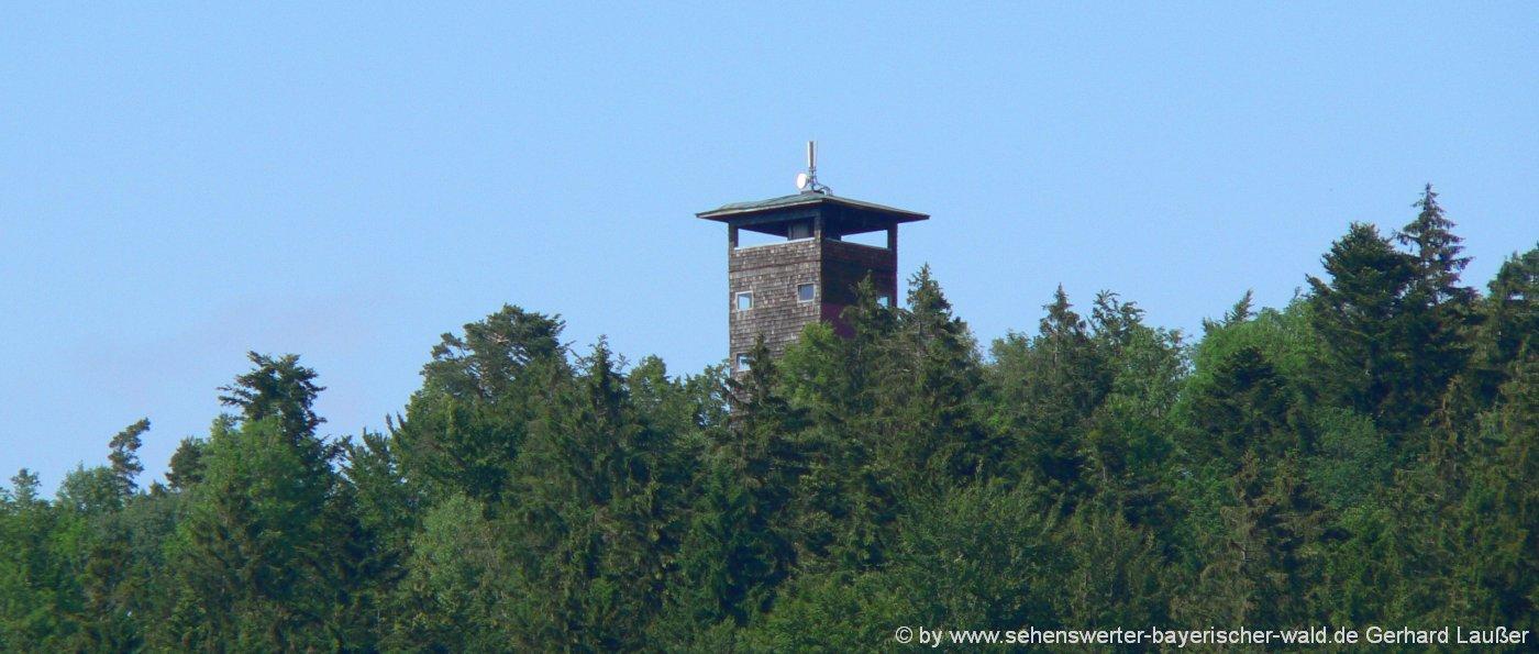 Wanderung zum Kadernberg Aussichtsturm bei Schönberg Einkehr Kadernberger Hütt'n