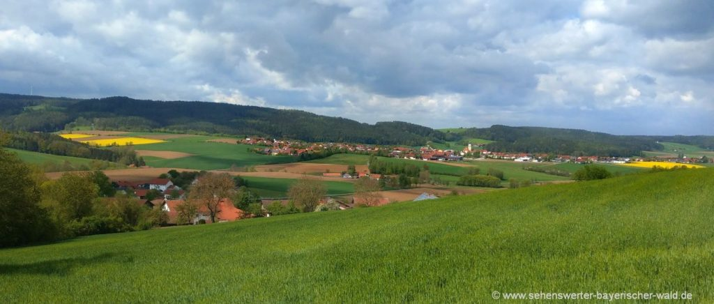 schorndorf-wandern-längseugenweg-thierling-landkreis-cham