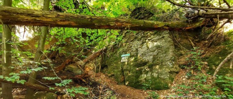 schussbach-arnbruck-urwald-rundweg-mosesfelsen