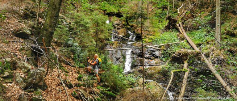 schussbach-rundwanderweg-urwald-tour-klamm-wasserfall-bild