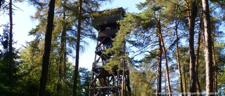 schwandorf-fuhrn-aussichtsturm-hirschberg-aussichtspunkt-oberpfalz-wald