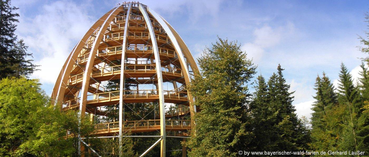 sehenswerter-bayerischer-wald-ausflugsziele-waldwipfelpfad-1400
