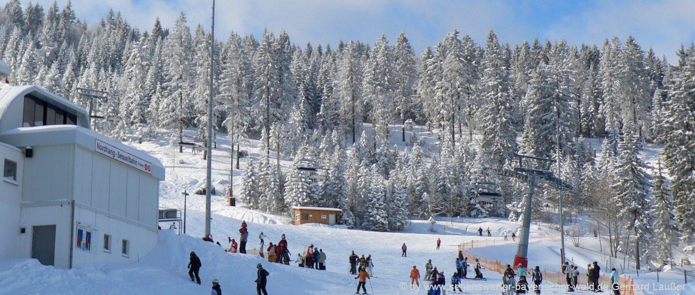 skigebiete-bayerischer-wald-wintersportgebiete-winterurlaub-arber