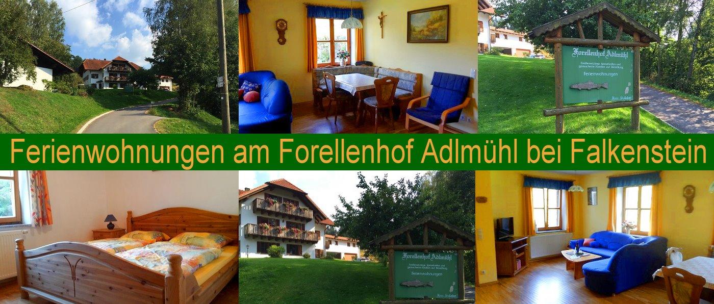 Forellenhof Adlmühl in Falkenstein Ferienwohnung in der Oberpfalz