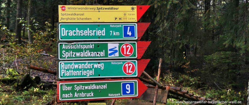 spitzwaldkanzel-wanderwege-aussichtspunkt-rundwanderweg-plattenriegel