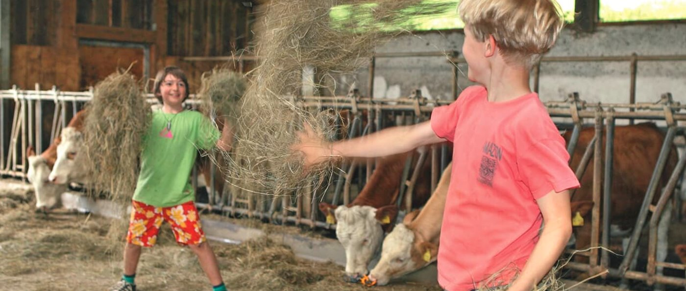 Bauernhofurlaub in Chamerau Bauernhof bei Runding Bayerischer Wald