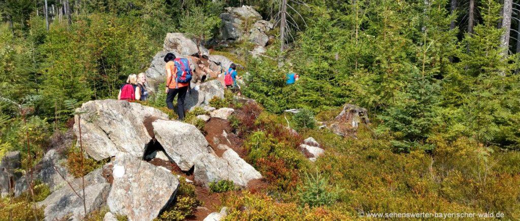 Wandern am Hadriwa Höhenweg bei Maibrunn Elisabethszell St. Englmar