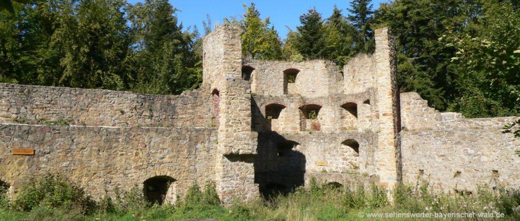 Ausflugsziel bei Stamsried Sehenswürdigkeiten Burg in der Oberpfalz