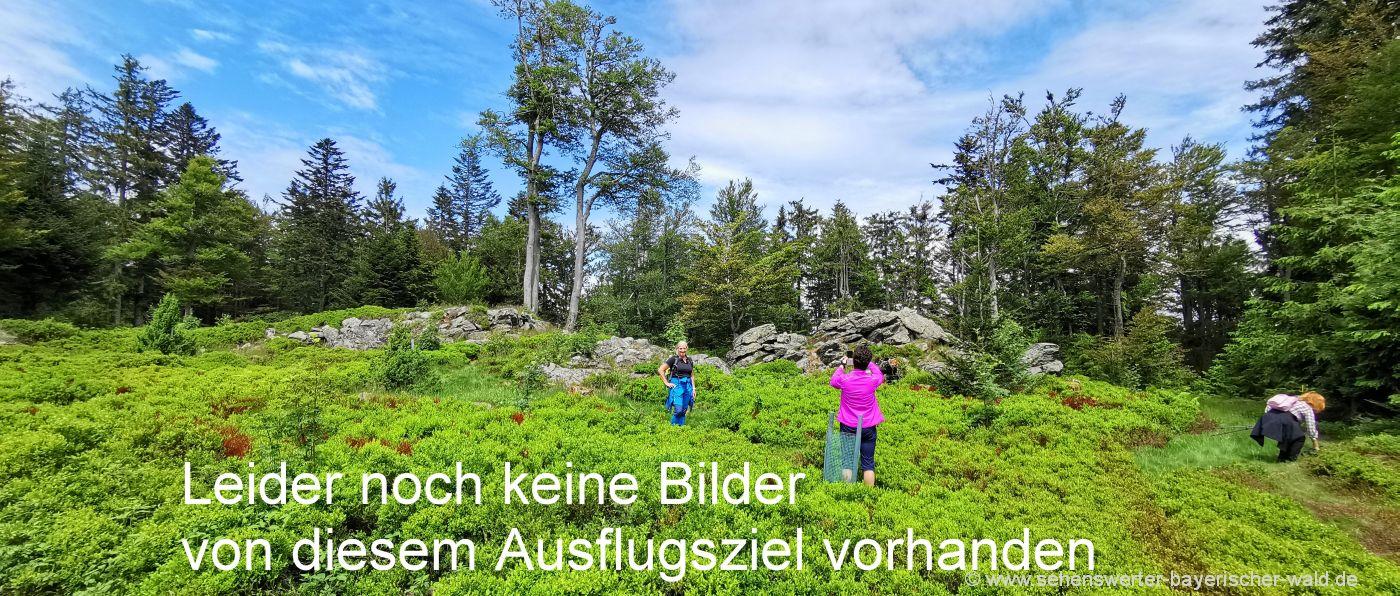 symbol-bilder-bayerischer-wald-natur-landschaftsfotos-wandern