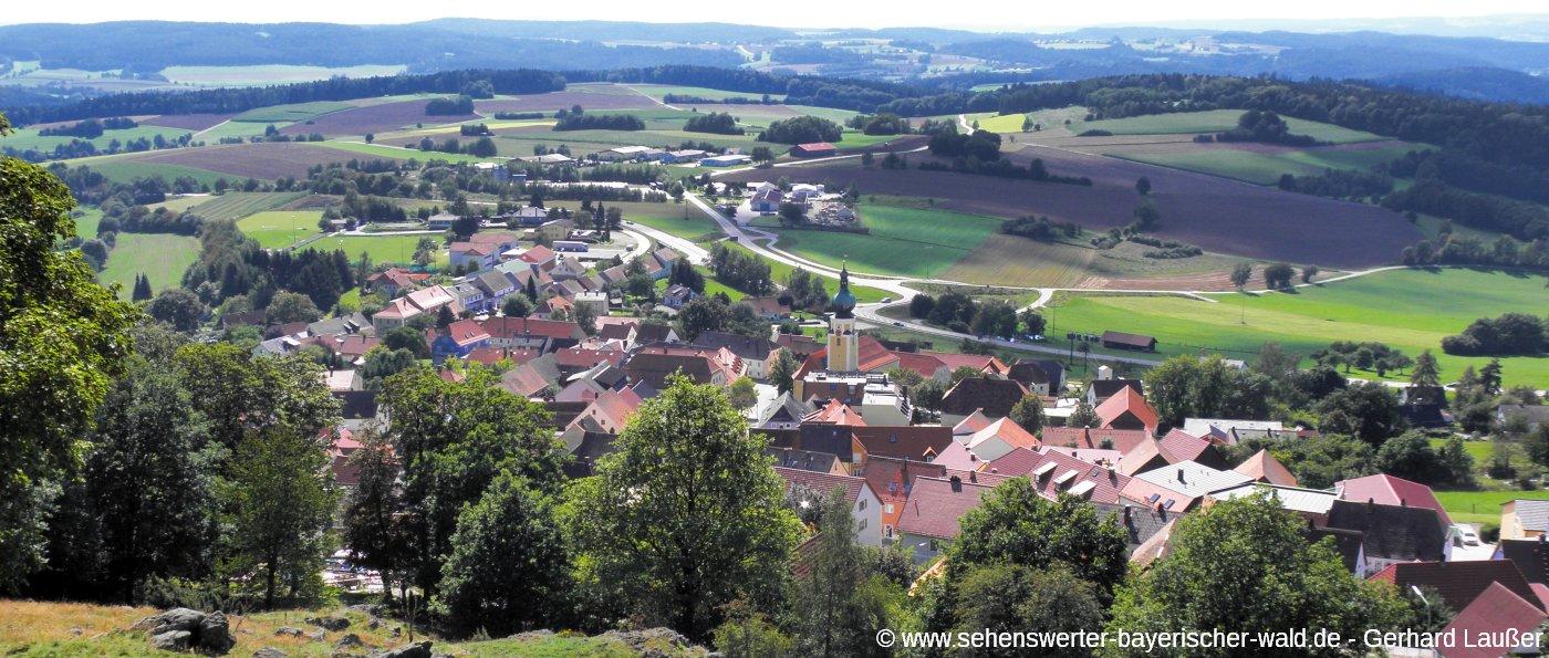 taennesberg-sehenswuerdigkeiten-oberpfaelzer-wald-ortsansicht