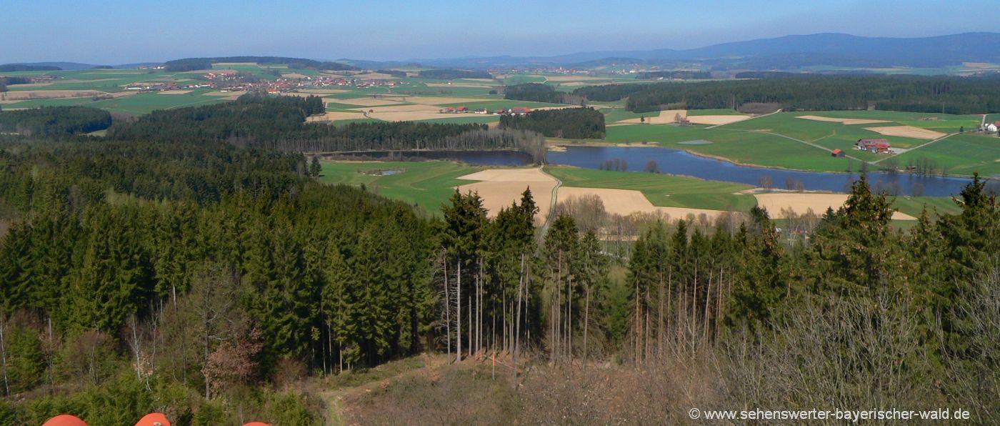 Burgruine Thanstein Aussichtspunkt Schwandorf in der Oberpfalz