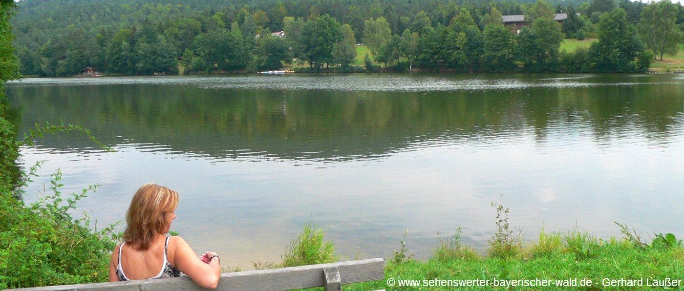 tittliing-ort-am-dreiburgensee-ruhebank-wanderung-panorama-1400