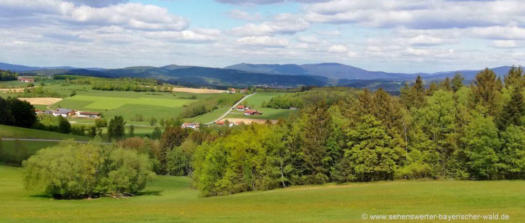 Traitsching Kulturgeschichtlicher Lehrpfad Wanderweg Aussichtspunkt Bayerischer Wald