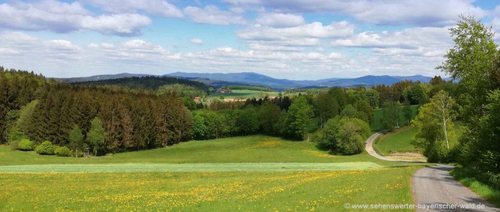 Traitsching Sattelpeilnstein Wanderweg mit Aussichtspunkten