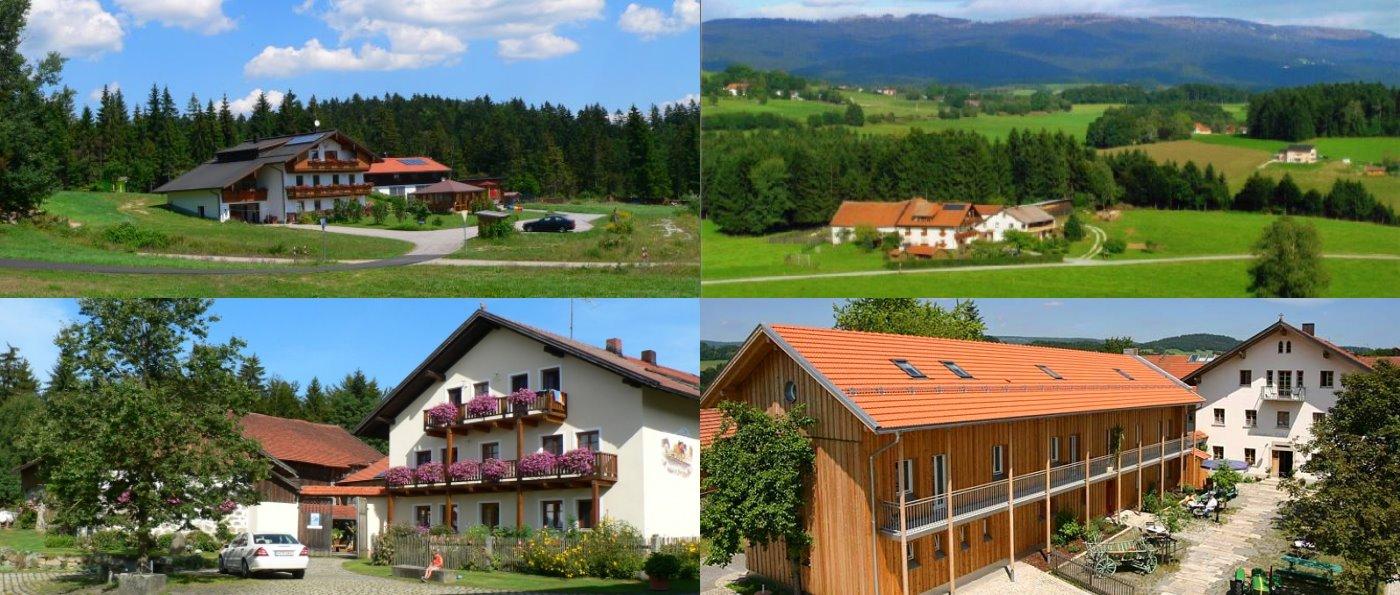 Bauernhofurlaub in Dreiländereck Bayerischer Wald Bauernhöfe 4 - 5 Sterne