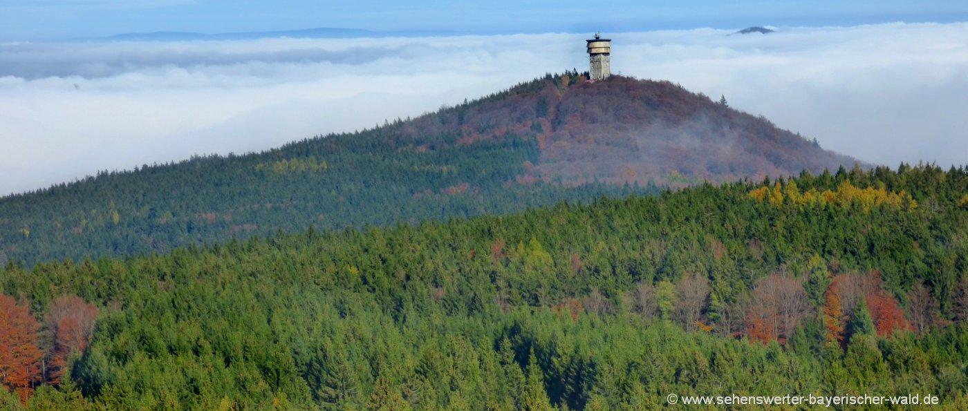 tschechien-plattenberg-böhmerwald-aussichtsturm-blick-zum-velky-zvon