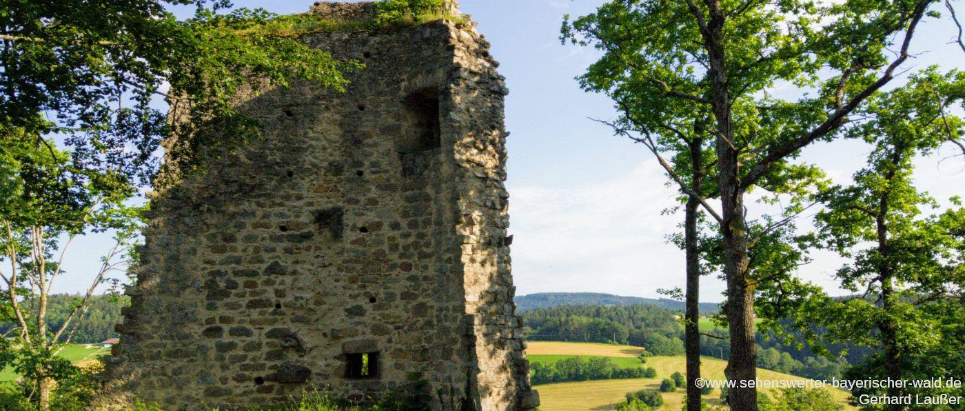 Ausflugsziele Gemeinde Wald Burgruine Siegenstein
