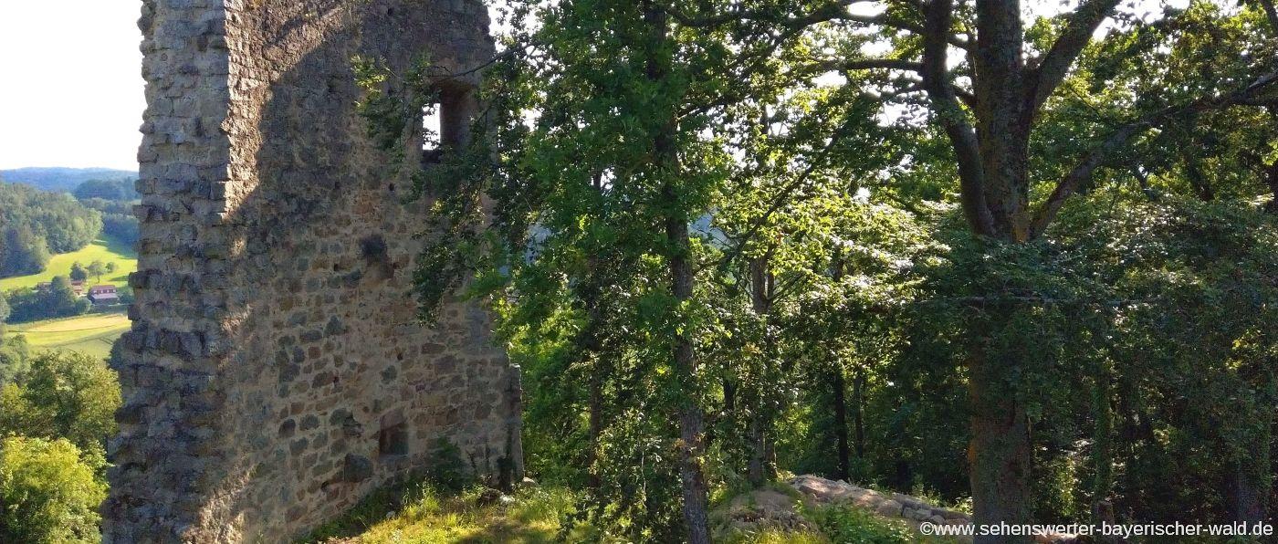 Sehenswürdigkeiten Wald Burgruine Siegensteinbei Süssenbach