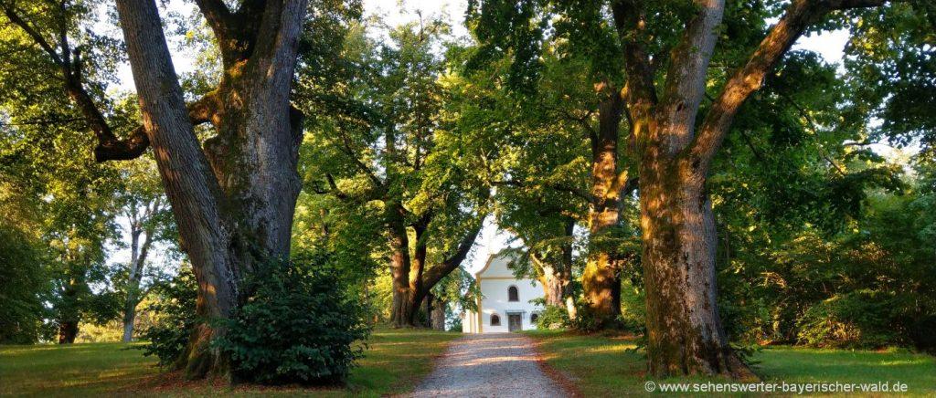Spaziergang in Waldkirchen, Stadtpark & Karoli Park mit Kapelle