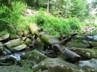 Schüler Sprachreisen in Bayern Sprachaufenthalte - Waldkirchen-saussbachklamm-dreilaendereck-bayern-tschechien