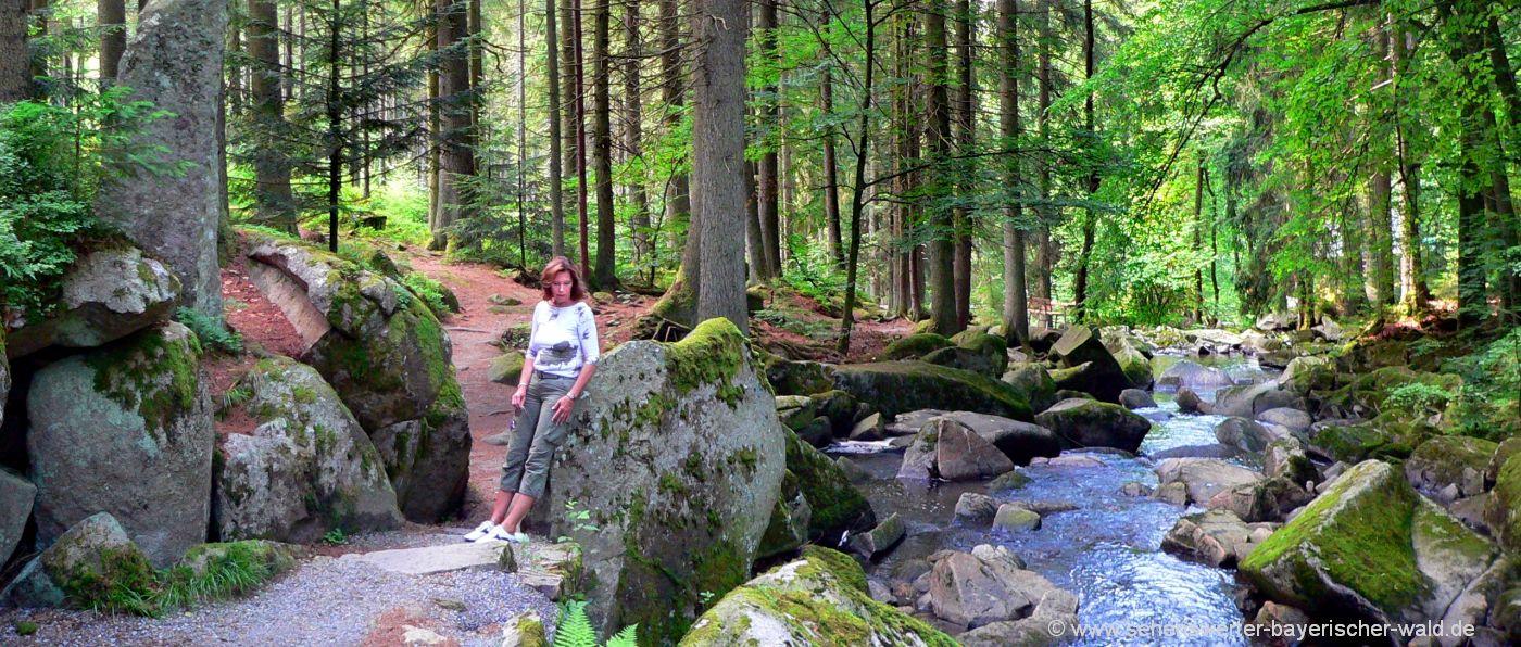 Klamm Wanderung bei Waldkirchen Wanderweg Saußbach