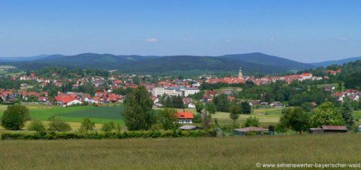 waldmünchen-ausflugsziele-bayerischer-wald-sehenswürdigkeiten-stadtansicht