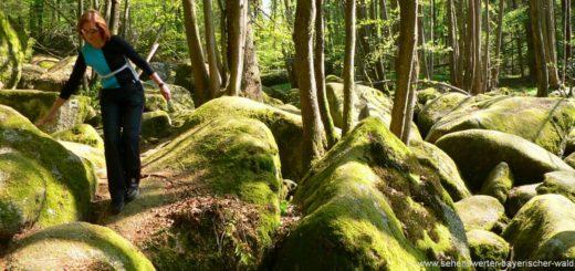 wandergebiet-höllbachtal-falkenstein-ausflugsziele-regensburg