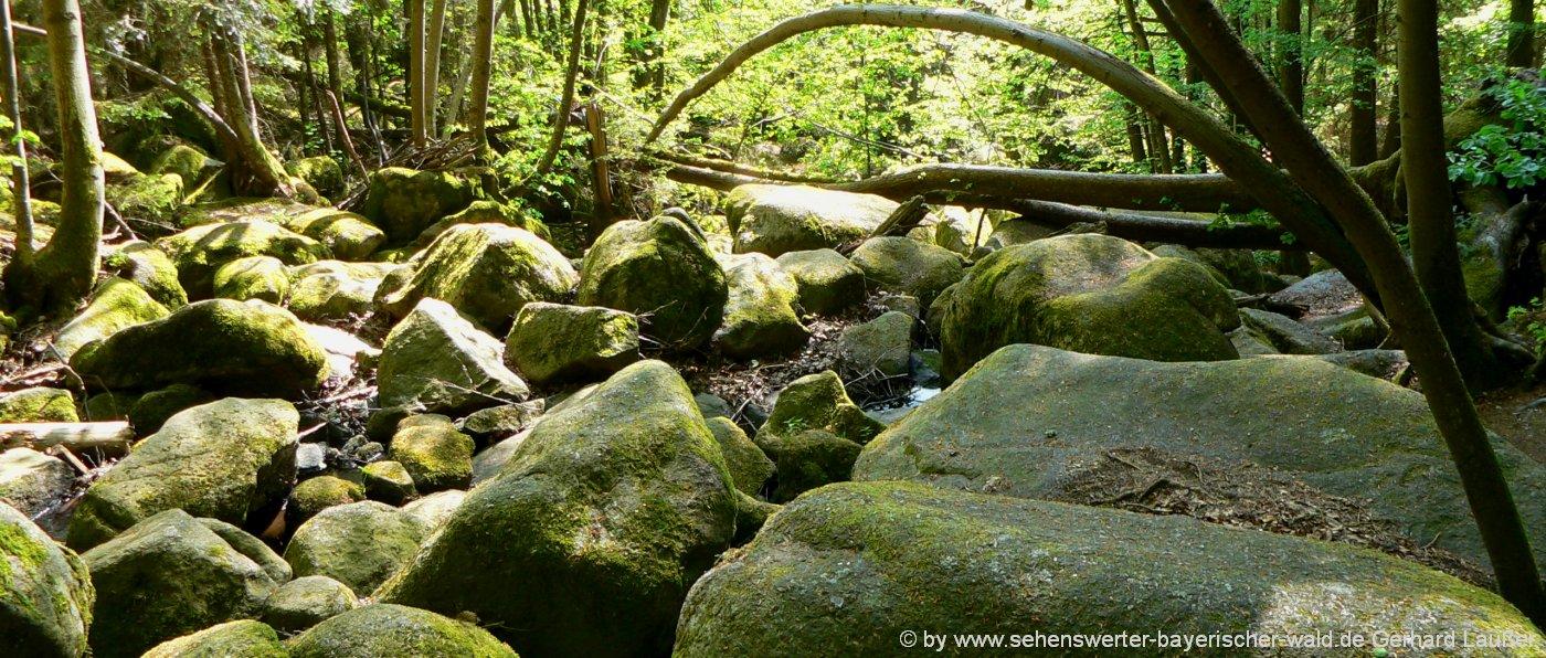 Wandern in der Hölle Felsenmeer im Höllbachtal