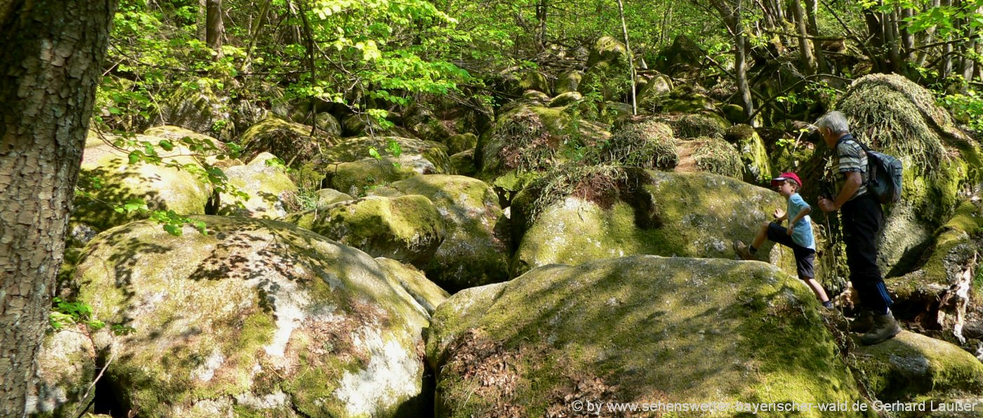 Naturschutzgebiet Höllbachtal bei Falkenstein und Brennberg