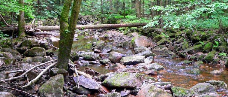 Wandergebiet Buchberger Leite Bayerischer Wald