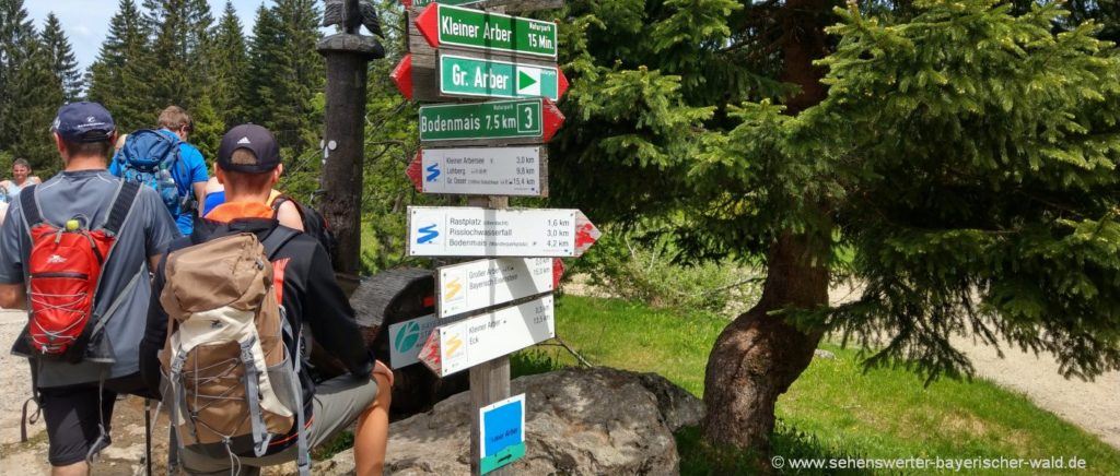 Wandertouren Bayerischer Wald Wanderführer mit Wanderkarten