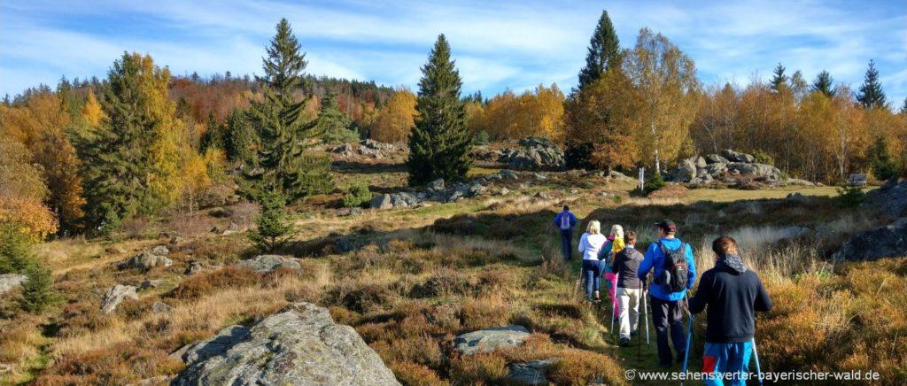 Wandertouren im Oberpfälzer Wald Wanderweg ab Hochfels