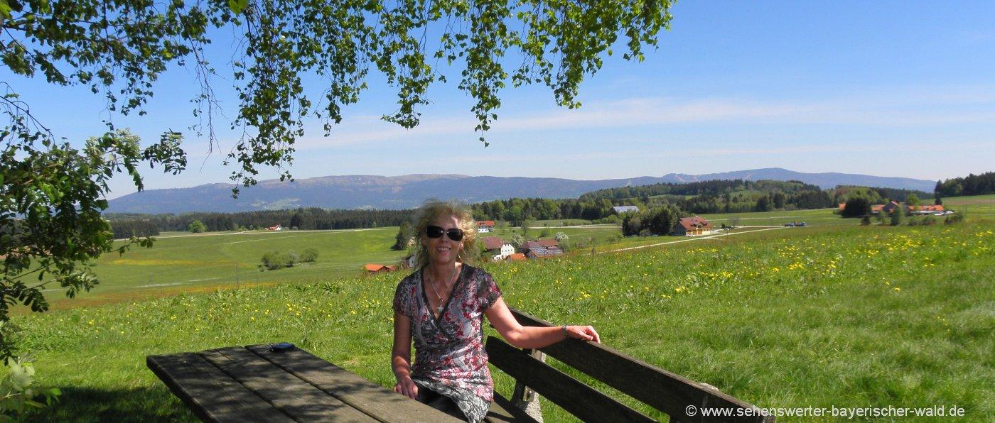 Wandern im Bayerischen Wald Wanderung zu Sehenswürdigkeiten Rastplatz