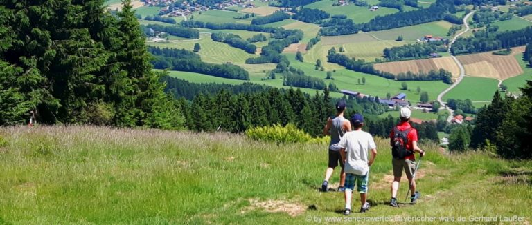 wanderurlaub-bayerischer-wald-wandertipps-niederbayern-wandertouren-oberpfalz