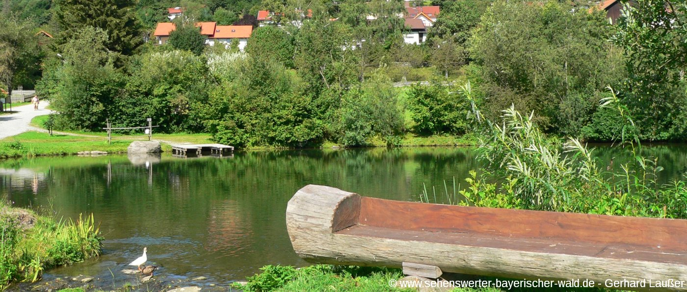 wanderweg-baierweg-sankt-englmar-bayerischer-wald-1400