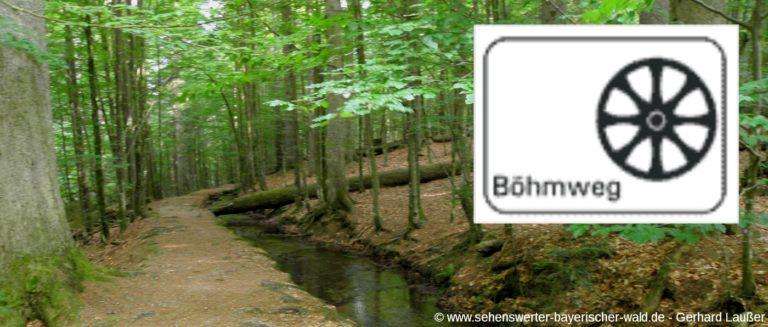 wanderweg-boehmweg-bayerischer-wald-urwaldweg