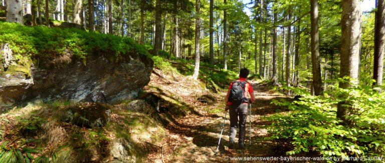 wanderwege-bayerischer-wald-wanderungen-niederbayern