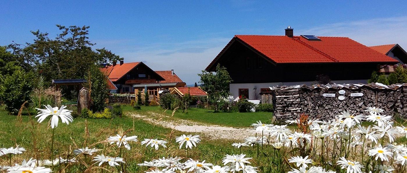 wartner-jagdhaus-bayerischer-wald-ferienhaus-mit-kaminofen
