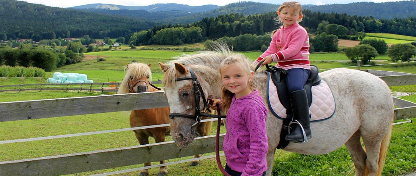 weber-reiterferien-kinderhotel-bayerischer-wald-familienhotel-mit-reiten