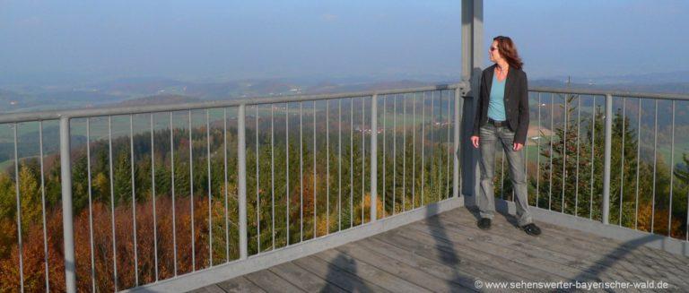 wegscheid-friedrichsberg-aussichtsturm-plattform-ausflugsziele