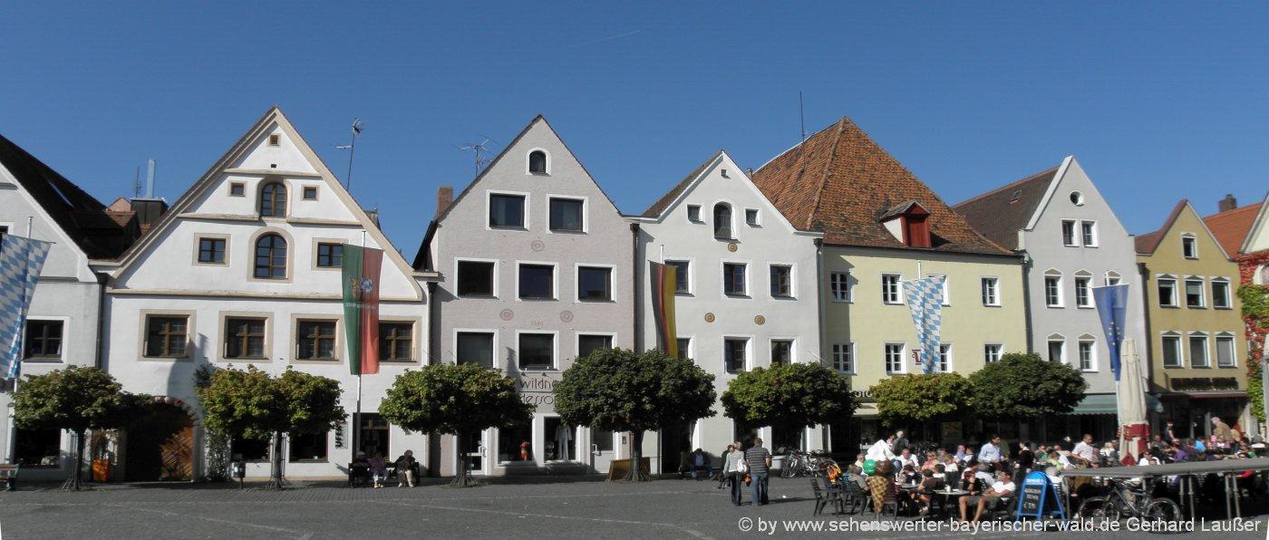 weiden-grosse-staedte-oberpfalz-historische-altstadt-haeuser-panoram