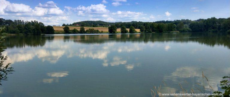 wiesenfelden-naturbadesee-niederbayern-naturbadeweiher