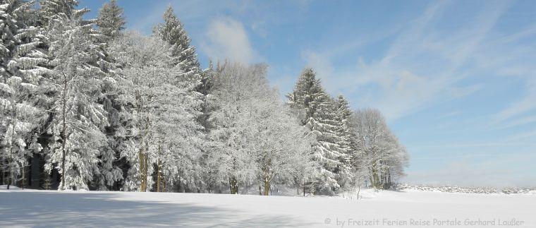 Winterferien im Bayerischen Wald verschneite Landschaft