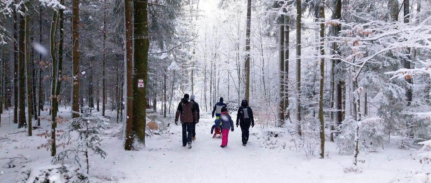 Bayerischer Wald wandern im Winter - Winterwanderwege Niederbayern & Oberpfalz