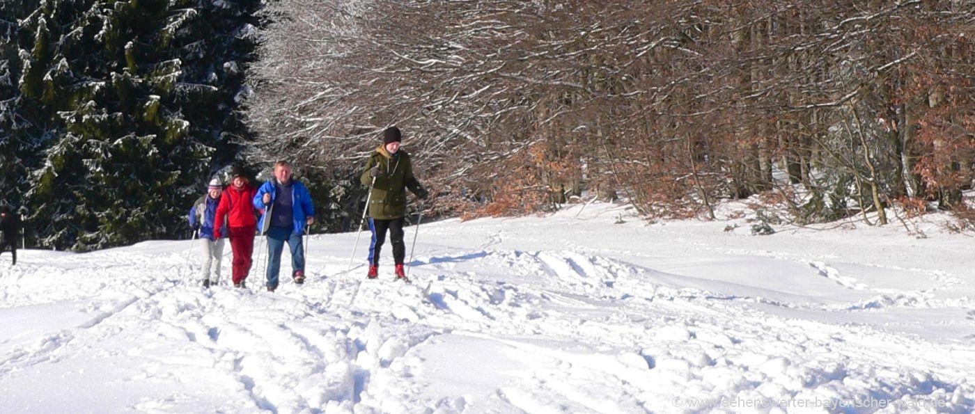 winterurlaub-bayerischer-wald-arber-langlaufurlaub-skiurlaub