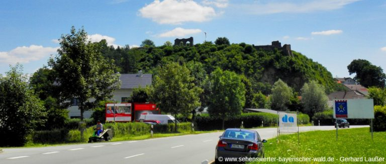 winzer-sehenswuerdigkeiten-ansicht-ortsanfang-burgruine-panorama