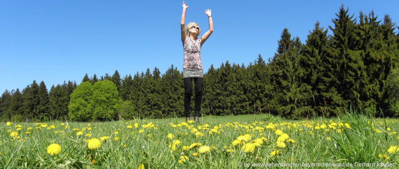 yoga-hotel-bayerischer-wald-wochenende-natur-bewegung