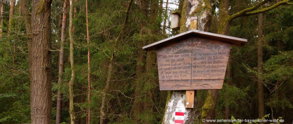 Himmelsstiege Zandt Rundwanderweg am Ppfahl Waldlehrpfad Himmelstreppe